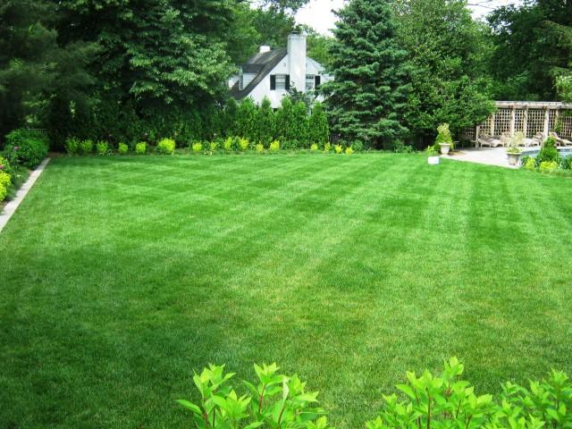 Horticultural-Maintenance